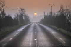 La route du soleil (Bertrand Thifaine) Tags: hiver route d750 brume humidit aube d17 soleillevant mauges