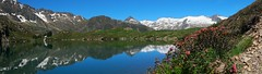Etang Sourd, en juin. (jpto_55) Tags: panorama etang etangsourd arige france fuji fujifilm fujixf1855mmf284r xe1 montagne paysage ngc
