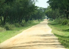 The Long Road (My photos live here) Tags: africa road park canon eos track elizabeth wildlife queen safari national uganda unpaved 1000d