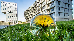 Architecture in Almere (Dennis-Dieleman) Tags: city building green netherlands grass weather architecture modern buildings apartments apartment centre nederland wave dandelion curve newtown centrum architectuur almere glassball gevel weerwater almerestad