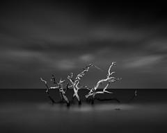 Ortus (Dennis_Ramos) Tags: georgia seascape longexposure blackandwhite fineart photography dennisramos formatthitech tokina tokina1735mmf4