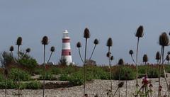 Orfordness lighthouse (Steph-nine) Tags: lighthouse coast suffolk military orfordness orfordnesslighthouse