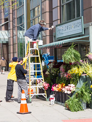 Flower Shop Prop (jphenney) Tags: movie downtown cleveland filmproduction sportscars movieprops fastfurious fastandfurious8