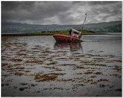 Laid to rest (Hugh Stanton) Tags: bay boat weed shipwreck rusting sunk salvage