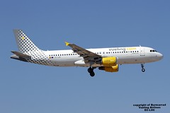 EC-LOC LMML 03-06-2016 (Burmarrad) Tags: cn aircraft airline airbus airlines registration vueling 4855 a320214 lmml ecloc 03062016