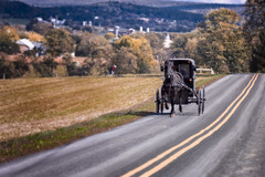 Buggy county (Eduard Moldoveanu Photography) Tags: amishcountry lancastercounty road amish animal beautiful buggy carriage countryside county farm field horse horses lancaster landscape nature oldfashioned outdoors pa pennsylvania religion rural scenery scenic scooter transportation travel vibrant usa