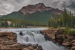 Athabasca Falls (FollowingNature) Tags: athabascafalls jasper waterfalls jaspernationalpark hwy93 canadianrockies followingnature banffnationalpark lakes nikond800 nikon1635mm banffphotospots banffphotolocations banffphotos jasperphotos cloudyday banfftouristspots