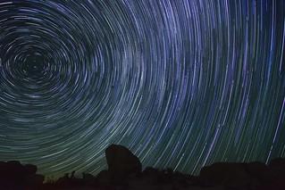 Star Trails at Joshua Tree