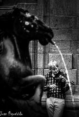 The Fiddle Player (Juan Figueirido) Tags: espaa spain galicia santiagodecompostela fiddle fiddleplayer violinista violn plazadeplateras fuentedeloscaballos prazadasprateras fontedoscabalos fz1000 juanfigueirido