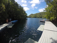 Jellyfish Lake, Palau.