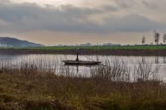 Maas (Zinaida Belaniuk) Tags: netherlands grass clouds landscape nederland maas limburg tegelen