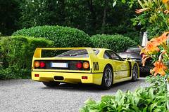 Natural Wonders (Stefano Bozzetti) Tags: auto flowers italy art classic ass beauty yellow wonder automobile italia sony rear automotive ferrari exotic giallo modena legend luxury rare supercar myth ferrariclub yellowferrari monza f40 italianart 2016 carspotting carporn ferrarif40 scuderiaferrari autodromodimonza giallomodena yellowferrarif40 19bozzy92 dschx400 ferrarif40giallomodena sonydschx400 ferrariclubvarese ferrariclubcaprinobergamasco megendary ferrariclubvedano