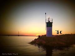 Sault de joie ... ( P-A) Tags: silhouette marina eau photos voilier magie nautisme activit lacdeschnes cielclair aylmerqc plaisancier atravsdetumirada rgatier nikonflickraward lemondemerveilleuxdelaphoto simpa