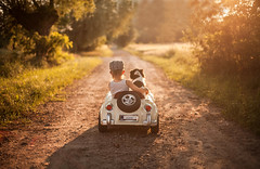 no road is long with good company :) (Jagoda 1410) Tags: road dog childhood togetherness friendship outdoor naturallight carride dogchild kidsandanimals coth childrensphotography