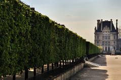 Pary (Michu_I) Tags: city paris france architecture miasto architektura pary francja