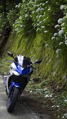 PIAA (rio_tc) Tags: japan olympus motorcycle yamaha saitama f28 em1  1240mm yzfr25