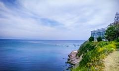 Lattakia Sea (nesreensahi) Tags: latakia landscape plants blue colorful syria syrie siria sky sun sea corniche clouds city citylife beach boats اللاذقية سوريا سورية