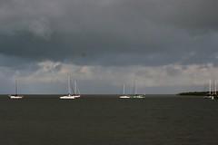 Cairns Harbour ---- IMG_4335 (harry de haan) Tags: harrydehaan palmcove qld fnq australia queensland wetseason wet