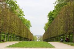 IMG_4463 (Irina Souiki) Tags: parcdesceaux france paris sceaux flowers nature parc park