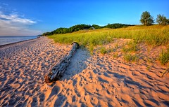 Grand Mere Beach (mswan777) Tags: sunset shadow summer sky lake seascape beach nature evening sand nikon glow michigan dunes great wide lakes scenic footprints sigma peaceful driftwood shore serene 1020mm d5100