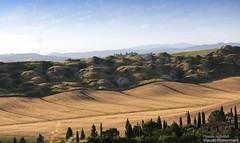 20160704_crete_senesi_siena_tuscany_66x67 (isogood) Tags: italy landscapes horizon country scenic tuscany crete siena cretesenesi asciano senesi