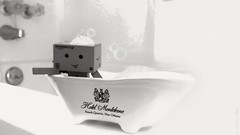 #tisthegoodlife (karmenbizet73) Tags: blackandwhite art monochrome toys photography bubblebath toystory bubbles secretlifeoftoys eyespy danbo amateurphotographer 96366 danboard photodevelopment danbolove toysunderthebed bubbledanbo 2016366photos tisthegoodlife