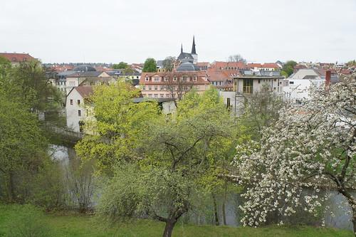 Weimar 2013 (Tagfalter) Tags: