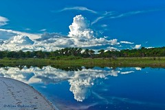 A developing thundercloud reflected in Kamuni Creek (Hoppy1951) Tags: southamerica guyana cumulonimbus westbankdemerara guiana justclouds arrowpoint kamunicreek arrowpointnatureresort allanhopkins hoppy1951 santamissionvillage
