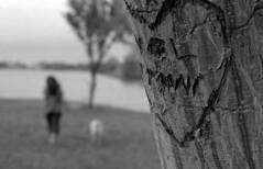 Girls in the Park (Leicaflex, 50mm Summicron) (PositiveAboutNegatives) Tags: park leica girls blackandwhite bw film analog 50mm florida kodak trix summicron manualfocus markii leicaflex leitz lakeworth vintageslr 50mmsummicron colorneg 11218 vuescan leicar leicaflexstandard colorperfect nikon9000scanner blackandwhitefilmphotography initialscarvedintotree johnprincememorialpark engravedinitials leicafilmphotography freefilmimages freefilmpictures