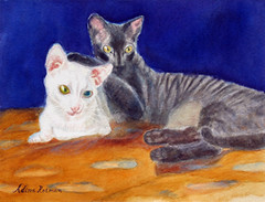 frank_welsh_cats_4in