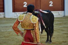 Cara a Cara (Fotomondeo) Tags: espaa valencia spain bull alicante bullfighter bullfight corrida toro bullring matador torero plazadetoros corridadetoros enriqueponce