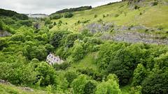 Cheedale Greens (matrobinsonphoto) Tags: green river dale district derbyshire peak cliffs valley limestone chee dales wye millers litton monsall cheedale