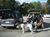 MaudslayStatePark10-23-2011014