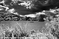 RickAquaIR5322 (Nick Woods Photography) Tags: trees lake water clouds forest landscape ir woods cloudy vegetation infrared fowl waterfowl dramaticsky shrubs cloudysky waterscape infraredfilter aquadrome rickmansworthaquadrome batchworth infraredlandscape batchworthlake