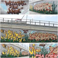 Welcome2TheJungle - Kelmtoo - Cato - PSA Crew - 2013 (Cato one) Tags: writing graffiti jungle writer salerno psa cato 2013 kelm