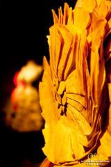 """Exposio """"(ARTE e MODA) - Salvage""""  O Requinte do Resto (Wilson Rodrigues / Fotgrafo - Santo Andr-SP) Tags: baby arte moda s caixa obra cultural steinberg autoral exposio tecido tecidos materiais registro reciclados fotografar recuperados"""