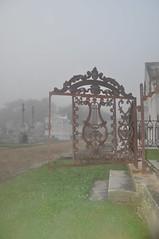 Foggy St John 049