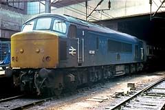 46046_1981_05_Birmingham