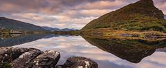 Killarney National Park – Ring of Kerry, Ireland (Tony Webster) Tags: ireland lake kerry killarneynationalpark countykerry upperlake ringofkerry republicofireland n71 muckrosslake gortracussane cloghfune britishisles2013 cgw1514a cgp1522b