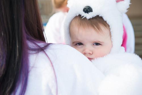 Polar Bear Plunge 2014