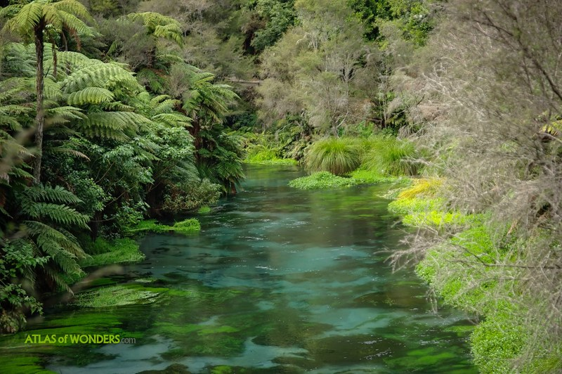 River green and blue