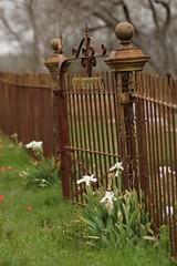 Linne Cemetery Gate