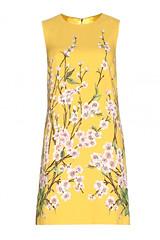 Dolce & Gabbana, €995, mytheresa.com