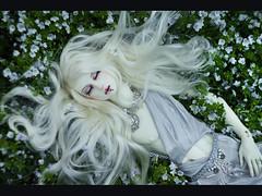 Death of Sidhe_07 (Ekaterina_Dreamer) Tags: blue red white flower green nature bernard stone silver death drops blood craft pale diamond sa quartz tunic sidhe dollshe