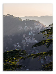 Morning In Shimla. (Parveen Singh) Tags: morning travel family blue trees sky people playing mountains cold ice beautiful station silhouette fog canon buildings children monkey shimla big flickr heaven sitting hill excited tourist resting far 550d 55250mm