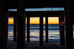 No Swimming (artkeh) Tags: ocean beach sunrise coast pier newjersey shore jerseyshore noswimming oceangrove oceangrovenj