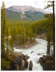 Sunwapta Falls (vern Ri) Tags: nikond70 canadianrockies