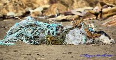 Old ropes and nets (wok smuggler) Tags: rubbish ropes nets dumped sigma150500mmlens nikond7100