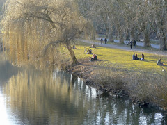 Smells Like Spring (Nicote) Tags: street people 30 germany one living three town is university state stuttgart traditional capital central it ridge rivers about tuebingen km neckar between tbingen ammer 2014 badenwrttemberg situated outh as studenttourists