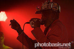 lee-scratch-perry-dub-cahmpions-festival-2015-WUK-24.jpg